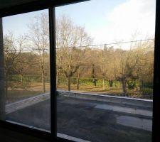 La vue côté Ouest depuis le bureau de l'étage, plus dégagée en hiver...