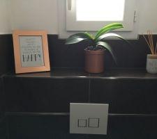 nouveau cadre pour les wc du rez de chausse