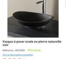 Idée vasques sdb