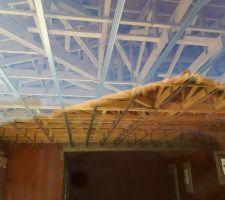 Et voilà on est reparti !! Rails pour le futur plafond en place. Lundi arrive la pieuvre et l électricien. Ce soir je suis heureuse :-)