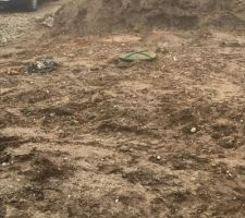 Évacuation eaux de pluies gouttières