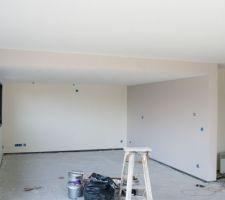 finition peinture salon