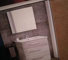 Meuble de salle de bain acheté chez Leroy Merlin !