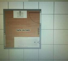 J'ai besoin de vos lumières ! Voici le plan de ma petite salle de bain. Les dimensions sont 2,29 x 2,43. La baignoire et le sèche - serviette sont programmés à cet emplacement. Je ne sais pas quoi choisir comme meubles sous vasque et colonne.. Si on prend une double vasque en 120cm je dis au revoir à la colonne de rangement. Je suis preneuse d'idées ! Merci d'avance !