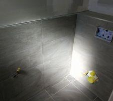 Faïence des wc du RDC