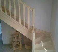 Escalier de base proposé