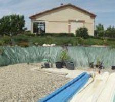 Aperçu du tour de la piscine avec installation de plantations