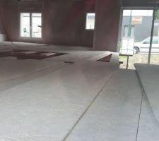 Plate-forme en place pour faire le plafond