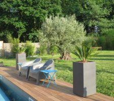 Derniers achats pour la terrasse : pots et plantations