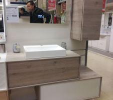 Les futurs meubles de la salle de bain, ils seront plus grand que ceux-ci afin d'y poser 2 vasques.