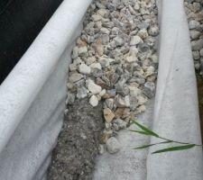 mis en place du drain dans sa chaussette de geotextile et de gros graviers