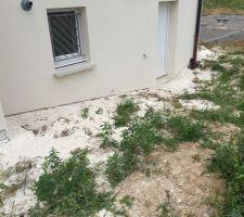 Murs crépis et le sol aussi. J'aurais préféré une remise plutot que de me crépir le jardin??