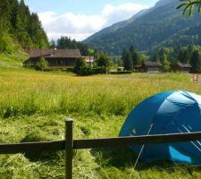 Ça y est, le terrain est à moi : camping chez moi, dans ma prairie.
