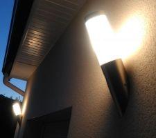 Flambeau 36 cm de chez BricoDepot