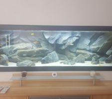 aquarium 1200l malawi