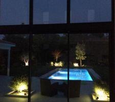 Éclairage piscine/jardin - Olivier, prunus, mimosa