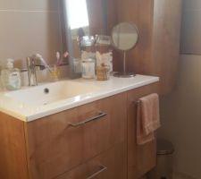 Meubles de salle de bain en place, manque le miroir.