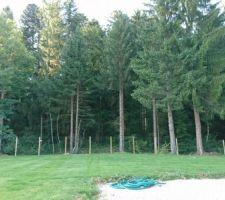 Vue sur une partie du jardin engazonné.  Grillage souple, poteaux bois scellés, choix fait pour une meilleure intégration paysagère