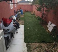 Déplacement du gazon synthétique pour preparer la vrai pelouse