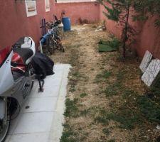 Déplacement du gazon synthétique pour preparer la vrai pelouse avant