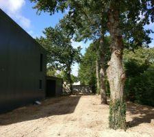 Le côté est du terrain. On a presque alignés les deux chênes et le frêne. Sur la gauche le chêne qui penche sur la garage. (Je pense faire couper ce dernier.