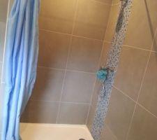 Installation provisoire rideau de douche bleu