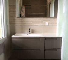 Faïences Salle d'Eau + meuble vasque