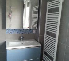Meuble vasque bleu 80 cm imandra acheté chez Casto