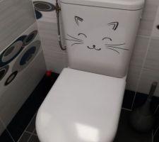 Pour une idée de WC caréné, un compromis entre le suspendu et les autres lol