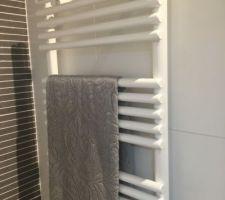 Radiateur sèche serviettes pour les lots