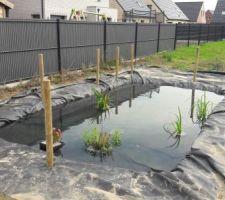Bassin - pose de la clôture