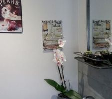 Salle du bain etage - plaques emaillees anciennes