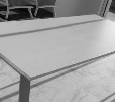 Table séjour 2m10x0m95 (Nolte)