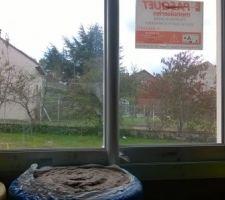 Fenêtre de la cuisine coulissante ... par contre déçu sur le système d'ouverture