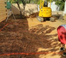 Traçage du trou à creuser. Au fond, l'olivier déplacé de 2m
