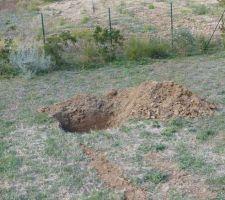 Trou pour le futur arbre au milieu du terrain : normalement un murier platane stérile