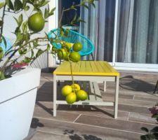 J'espère pouvoir profiter de ces beaux fruits dans une tarte aux citrons.