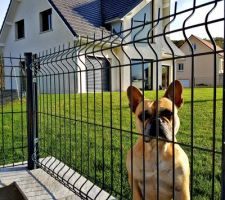 Notre super chien de garde <3