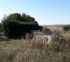 Terrain avant début des travaux : Rangée de thuyas à supprimer et déchets sur le coté droit