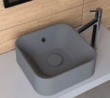 Vasque à poser salle d?eau rdc
