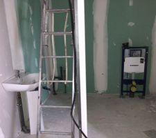 Pose des WC et mis en place des arrivées/évacuations du lavabo et LL