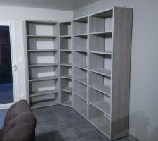 Installation de la bibliothèque faite de plusieurs éléments Mezzo de chez but. Enfin de quoi sortir les cartons de livres...