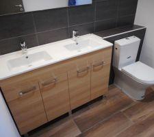 Meuble double vasque + WC Roca