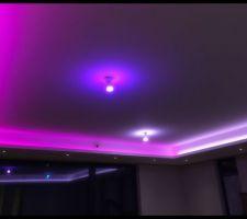 Bandeaux LED Philips HUE Lightstrip plus