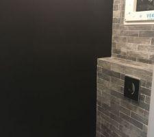 Mur ardoise toilettes RDC
