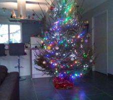 Sapin illuminé de Noël 2017