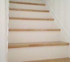Escalier mis en peinture et vitrifié