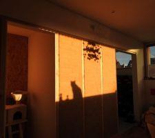 Le mur de briques, théâtre d'ombres...