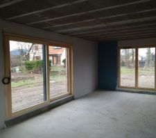 Les portes fenêtres du salon, en Bois-aluminium