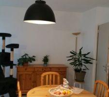 Suspension pièce de vie de 40 m2. J ai mis 3 lampes identiques.